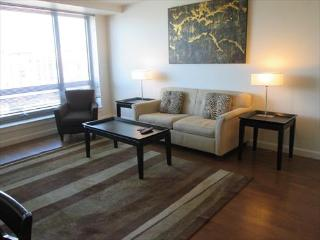 Lux Boston Theater District 1 BR w/WiFi - Boston vacation rentals