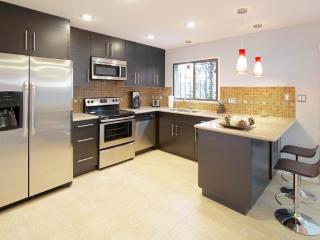 LARGE CONDO IN THE HEART OF PHOENIX - Phoenix vacation rentals