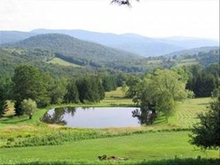 149 ACRES OF MEADOWS AND WOODS / SPECTUCULAR VIEW - Catskills vacation rentals