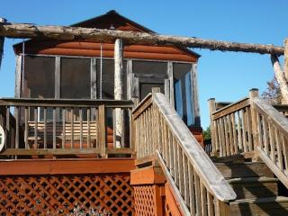 Lakefront Cabin with Some Much to Offer!! - South Carolina Lakes & Blackwater Rivers vacation rentals