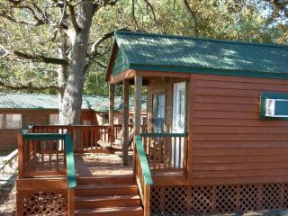 Small Cabin for 2 at a Great Price! - South Carolina Lakes & Blackwater Rivers vacation rentals