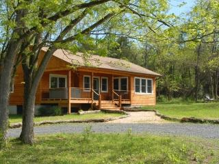 Deluxe 1 BR Riverfront Cabin on 54 Acres - Rileyville vacation rentals