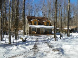Poconos Country Cabin - Pocono Lake vacation rentals