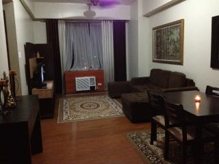 1BR IN SECURED/CELEBRITIES CONDO UNITS - Luzon vacation rentals