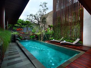 Canggu New 4 Bedroom Villa - Kuta vacation rentals