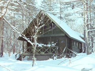 Big Foot Cabin Hakuba - Kitaazumi-gun vacation rentals