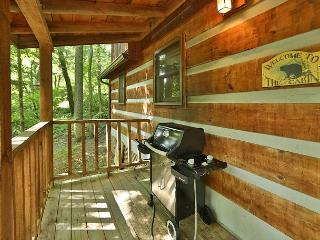 2 Bedroom Cabin Within Walking Distance to Downtown Gatlinburg and Trolley - Sevierville vacation rentals