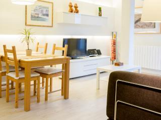 Comfortable with terrace near La Concha beach WIFI - San Sebastian - Donostia vacation rentals