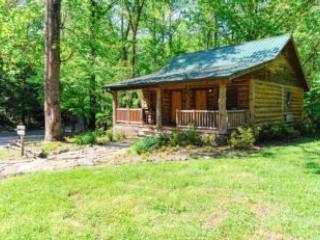 Evergreen Cottage - United States vacation rentals