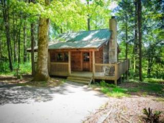 Newfound Gap - United States vacation rentals