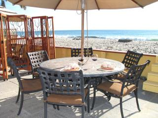 Beautifully Maintained Duplex on the Sand! - Capistrano Beach vacation rentals