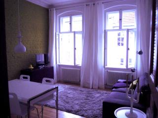 Kantstrasse - Berlin vacation rentals
