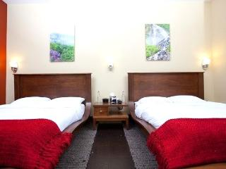 Luxurious and contemporary deluxe room within Tsaina Lodge with either 1 or 2 queen beds. Glorious views from the balcony - Port Heiden vacation rentals