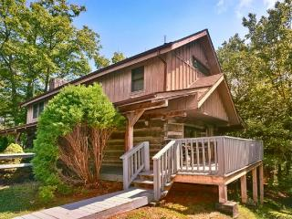 4 Seasons Gatlinburg - Blue Ridge Mountains vacation rentals