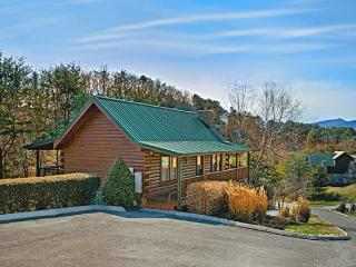 Lil Cajun Cabin - Blue Ridge Mountains vacation rentals
