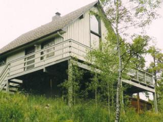 Black Bear Lodge - Black Hawk vacation rentals