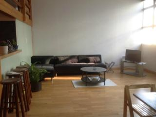Spacious and sunlit apartment in Grenoble's center - Grenoble vacation rentals