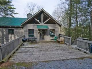 Tree House - United States vacation rentals