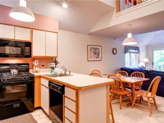 The Woods Resort & Spa-WV10 - Killington Area vacation rentals