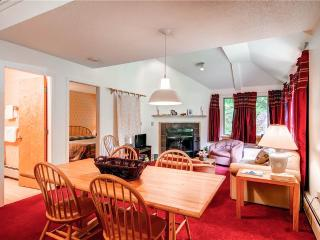 The Woods Resort & Spa-WV43 - Killington Area vacation rentals