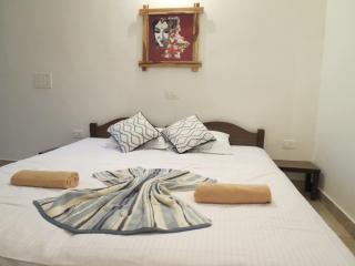 52) Modern Studio 5 mins from Beach - Arpora vacation rentals