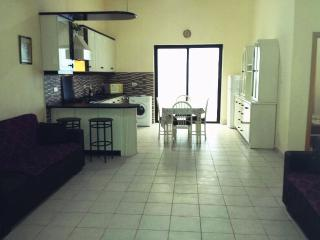 Huge 1 bedroom flat with yard,free airport transfer - Msida vacation rentals