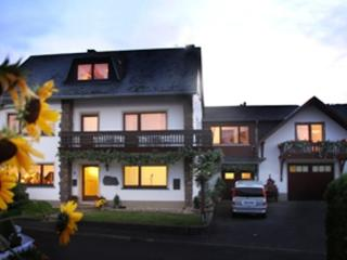Double Room in Leiwen - friendly, relaxing, comfortable (# 5332) - Leiwen vacation rentals