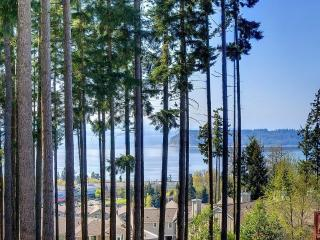 Fabulous home for vacation - Mukilteo vacation rentals