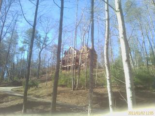 New Mountain View Lots of Privacy Romantic Getaway - North Georgia Mountains vacation rentals
