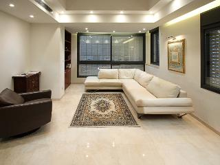 Stunning 4 BDR JERUSALEM VACATION APT - Jerusalem vacation rentals