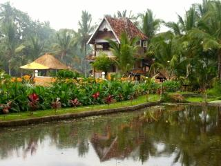 Authentic Luxury Rice Field Joglo - Pool and Wifi - Ubud vacation rentals