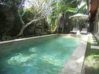 Ayu Villas, 3 Bed,Well Priced Family Accom. Umalas - Umalas vacation rentals