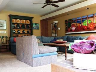 Beautiful home located between Vail and Beaver Creek resort - Northwest Colorado vacation rentals