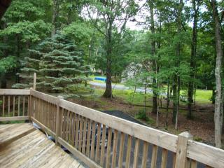 Beautiful Pocono Getaway Luxury Home Sleeps 12 - Hawley vacation rentals