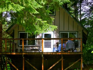 Running Deer Chalet at Mt. Rainier - Ashford vacation rentals