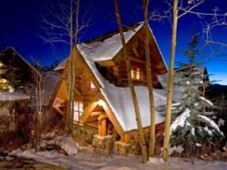 See Forever Cabin - Telluride vacation rentals