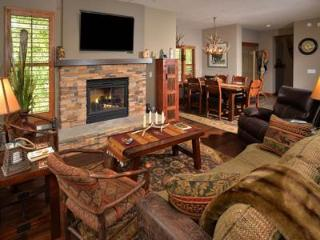 Canyon Run E-101 - Vail vacation rentals