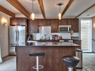 Seattle modern eco with garage and roofdeck - Seattle vacation rentals