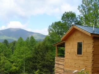 Hot Springs Log Cabins-honeymoon cabins w/hot tub! - Hot Springs vacation rentals