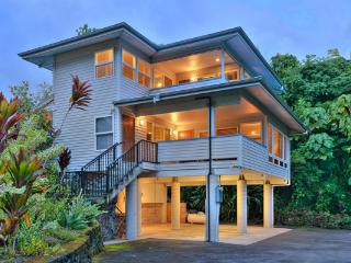 Oceanfront @ Beach - Hilo District vacation rentals