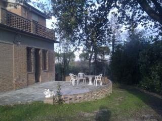 cottage in olive tree grove - Siena vacation rentals