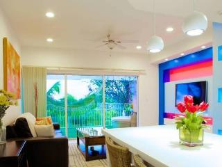 PENTHOUSE IN GRACE BAY + A FREE CAR - Turks and Caicos vacation rentals