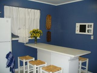 Beaches, Golf and Wineries PLUS Family Fun!!! - Southwest Michigan vacation rentals