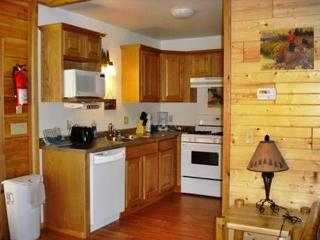 Northwoods Lodge for up to 8 and Indoor Waterpark - Warrens vacation rentals
