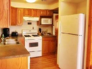 Northwoods Lodge for up to 20 and Indoor Waterpark - Warrens vacation rentals