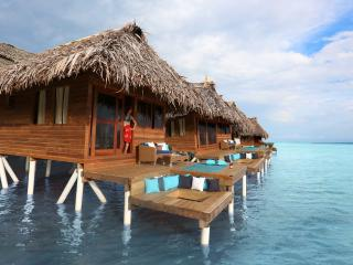 Over-The-Water Bungalow in Paradise - Isla Bastimentos vacation rentals
