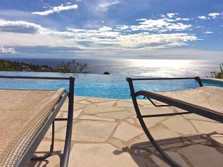 Beautiful Modern Villa By The Sea - Les Issambres vacation rentals