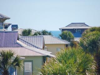 Lucy's Blue 307 - New Listing on 30A! Village of South Walton! Book Online! Buy 3 Nights, get 1 Free! - Destin vacation rentals