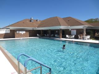 Comfortable Home for Rent in 55+ Community - Ellenton vacation rentals