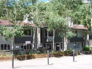 Vail-Trails-Chalet - Vail vacation rentals
